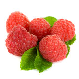 Fresh raspberry. Closeup on a white background Stock Photo
