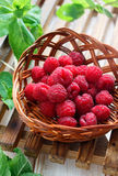 Fresh raspberry. In the basket with fresh mint leaves Royalty Free Stock Images
