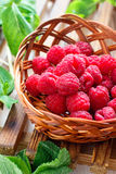 Fresh raspberry. In the basket with fresh mint leaves Royalty Free Stock Image