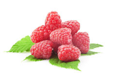 Fresh raspberry. With green leaf on white background Stock Photography