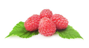 Fresh raspberry. With green leaf on white background Stock Images
