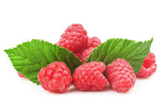 Fresh raspberry. With green leaf on white background Stock Image