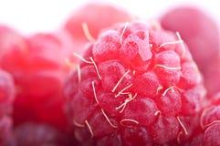 Fresh raspberry. Isolated on white background Royalty Free Stock Image