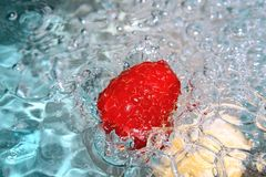 Fresh raspberry. Fresh raspberry dropped to pure water Royalty Free Stock Photo
