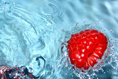 Fresh raspberry. Fresh raspberry dropped to pure water Stock Photography