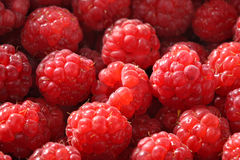 Fresh raspberry background. Fresh red raspberry background. Closeup Royalty Free Stock Photography