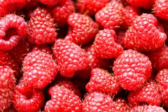 Fresh raspberry background close up. Fresh raspberry and background close up Royalty Free Stock Photos