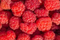 Fresh raspberry background. A Red fresh raspberry background Stock Image
