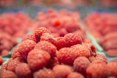 Fresh raspberry basket. In local market place Royalty Free Stock Image