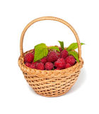 Fresh raspberry in a basket. Isolated on white background Stock Photography