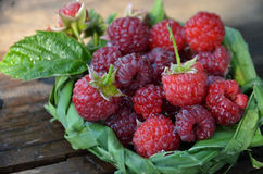 Fresh raspberry in a basket of leaves on wooden background Stock Photos