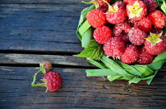 Fresh raspberry in a basket of leaves on wooden background Stock Image