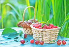 Fresh raspberry. In basket and on a table Royalty Free Stock Photography