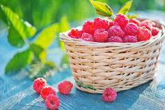 Fresh raspberry. In basket and on a table Stock Photography