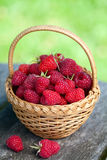 Fresh raspberry in a basket. On wooden table Stock Images