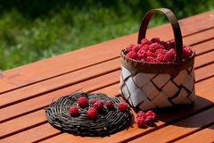 Fresh raspberry in a basket on wooden table. Sunlight Royalty Free Stock Image