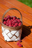 Fresh raspberry in a basket on wooden table. Sunlight Stock Image