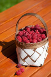 Fresh raspberry in a basket on wooden table. Sunlight Stock Photo