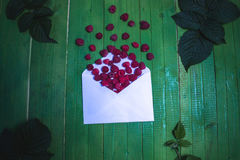 Fresh raspberry berries in an envelope on a green wooden background. Fresh raspberry berries in an envelope on a green wooden background Royalty Free Stock Images