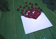 Fresh raspberry berries in an envelope on a green wooden background. Royalty Free Stock Images
