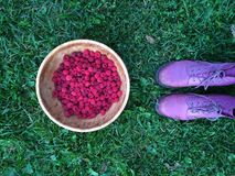 Fresh Raspberry. Berries picked in a big wooden plate Stock Photography