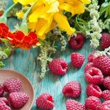 Fresh raspberry Stock Photography