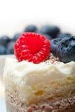 Fresh raspberry and blueberry cake. Fresh homemade raspberry and blueberry cream cake Royalty Free Stock Photos
