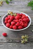 Fresh raspberry in bowl. Close-up Royalty Free Stock Images