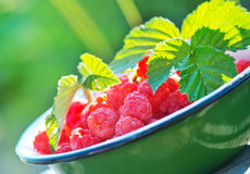 Fresh raspberry. In the bowl and on a table Stock Photography