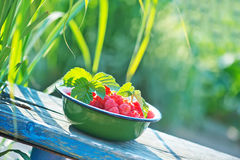 Fresh raspberry. In the bowl and on a table Stock Photo