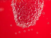 Fresh raspberry with bubbles. On pink background. Nice fruit macro Royalty Free Stock Image