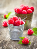 Fresh raspberry in the bucket. On the wooden table Royalty Free Stock Image
