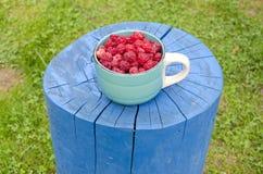 Fresh raspberry in ceramic cup. Fresh healthy raspberry in ceramic cup Royalty Free Stock Photos