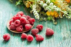 Fresh raspberry. In ceramic plate on the blue wooden rustic desk with green summer herbs Royalty Free Stock Photo