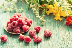 Fresh raspberry Royalty Free Stock Photo