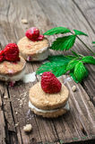 Fresh raspberry cookies Royalty Free Stock Image