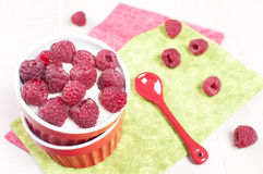 Fresh raspberry with cream or yogurt dessert Stock Images