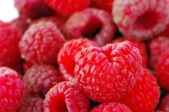 Fresh raspberry crop. Close up of fresh raspberry crop Stock Photography