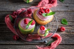 Fresh raspberry cupcake made of cream and fruits. On dark background Royalty Free Stock Image