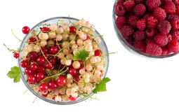 Fresh Raspberry and currant isolated. Fresh Raspberry and currant in glass bowls isolated. Photography Royalty Free Stock Photos