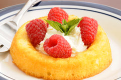 Fresh Raspberry Dessert. Served with whipped cream Stock Image