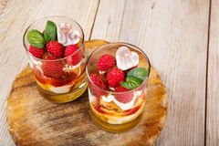 Fresh raspberry dessert with biscuit Royalty Free Stock Photos