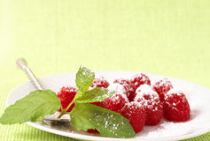 Fresh raspberry dessert with mint Royalty Free Stock Photo