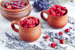 Fresh raspberry and dry lavander in rustic design on wooden background. Fresh raspberry in pots and lavander dry flowers in rustic design on wooden background Stock Photography