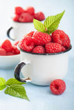 Fresh raspberry in enamel cup over blue background.  Stock Photo