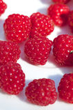 Fresh raspberry. Fresh forest raspberry close up Stock Photos