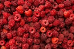 Fresh raspberry. As a background Stock Photos