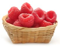 Fresh Raspberry. In a basket over white background Royalty Free Stock Photography