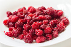 Fresh Raspberry Fruit. Fresh raspberry ,red fruit, tasty healthy food Royalty Free Stock Photo