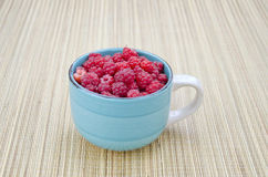 Fresh raspberry fruits in blue ceramic cup. Fresh summer time raspberry fruits in blue ceramic cup Royalty Free Stock Images